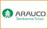 Arauco (Concepción)