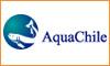Aqua Chile (Puerto Montt)
